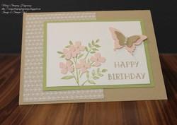 Butterfly birthdays 1a
