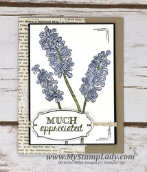 Wisteria_much_apprieciated