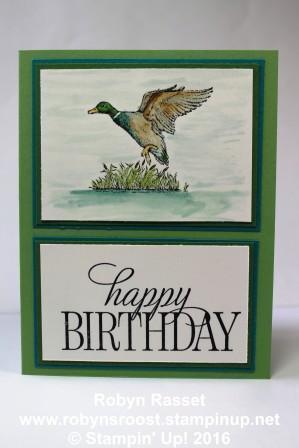 Card 446a wilderness awaits