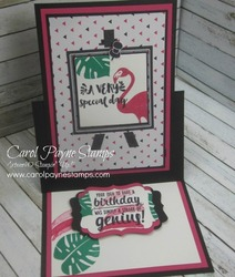 Stampin up pop of pink paradise carolpaynestamps2   copy
