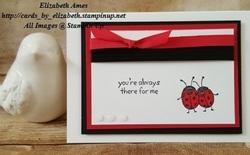 Ladybugswmflip