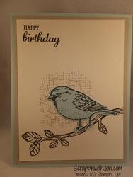 Best_birds_birthday