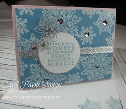 Stampin_up_flurry_of_wishes_carolpaynestamps1