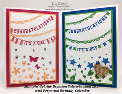 27_any_occasions_sab_2017_baby_cards