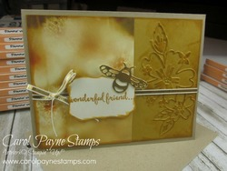 Stampin_up_dragonfly_dreams_carolpaynestamps31