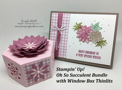 64_oh_so_succulent_bundle_with_window_box_thinlits