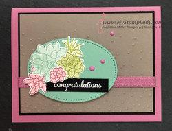 Congratulations_succulent