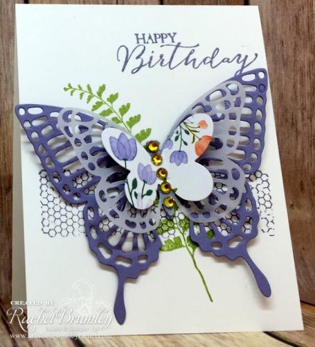 Butterfly basics stef3