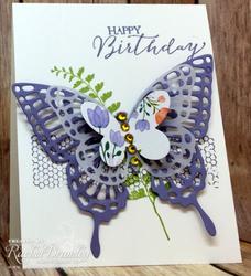 Butterfly_basics_stef3