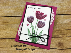 103 tranquil tulips