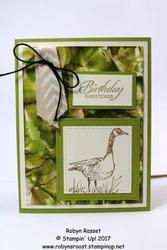 Stampin__up__wetlands_camouflage_goose_tall