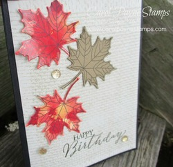 Stampin_up_colorful_seasons_polished_stone_carolpaynestamps4