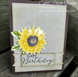 Stampin_up_painted_autumn_carolpaynestamps1