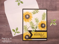 Thankful_sunflowers