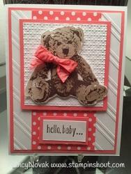 Baby_bear_1