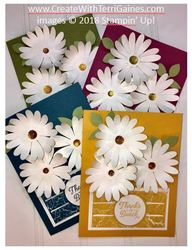 Daisy cards   new