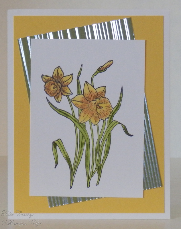 You_re_inspiring_daffodil_delight