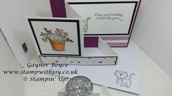 Pretty kitty fun z fold card stampin  up  gaynor boyce stamp with joy