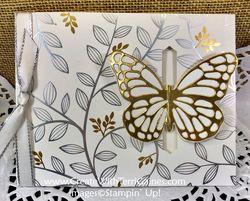 Springtime butterfly   15