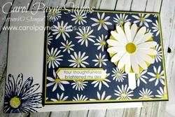 Stampin_up_daisy_delight_carolpaynestamps1