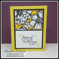 Petal_passion_birthday_front_daffodil