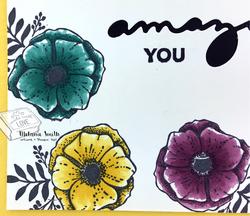 Su_march_2018_amazing_close_up