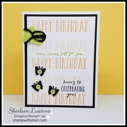 Perennial_birthday_front