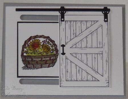 Sliding_barn_door