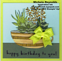 Fruit_basket_succulent_birthday_watermark