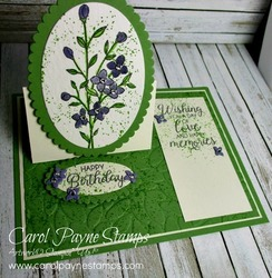 Stampin_up_touches_of_texture_carolpaynestamps1