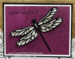 Dragonfly_dreams___cwt_110f
