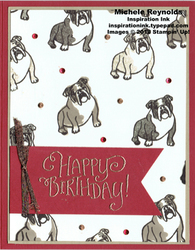 Sitting pretty bulldog birthday watermark