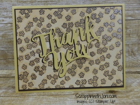 Thank_you_in_so_saffron