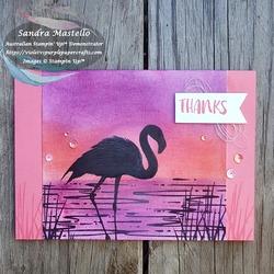 Fabulous_flamingo_for_caseing_tuesday_155_00