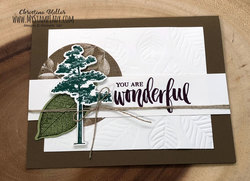 Full_wonderful_emboss