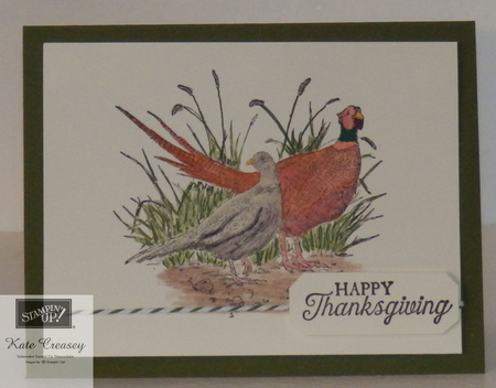 Pleasant pheasants happy thanksgiving