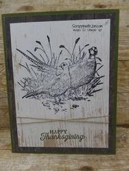 Pheasants_on_wood