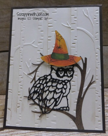 Halloween night owl