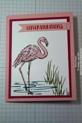 Fabulous_flamingo_tall