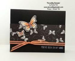 Butterflies_in_black