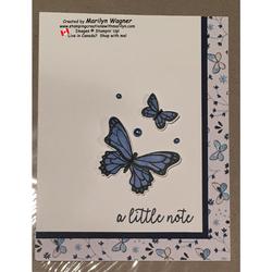 Butterfly_gala_013(2)