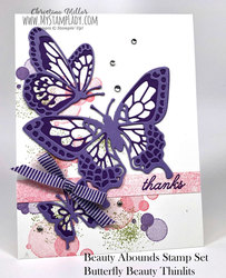 Purple_butterfly_abounds