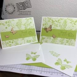 Butterfly_gala_green_1