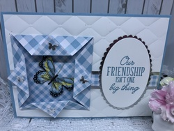 Gingham_and_butterfly_friendship_card_outside