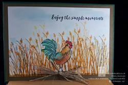 Watermark chicken