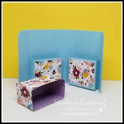 Book style box with dsp