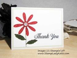 Daisy_thank_you_02