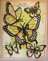 Butterfly_lf_w
