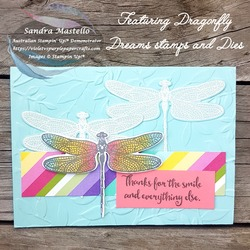 Dragonfly dreams casetue