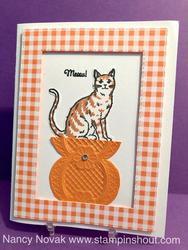 Gingham cat